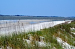 Atlantic beach, Sapelo Island, GA